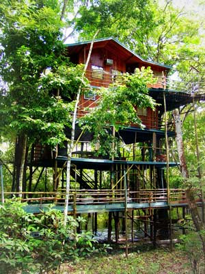 Unusual holidays, Amazon treehouse Ariau