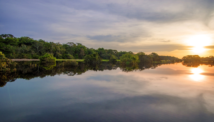 Amazon River at sunset.