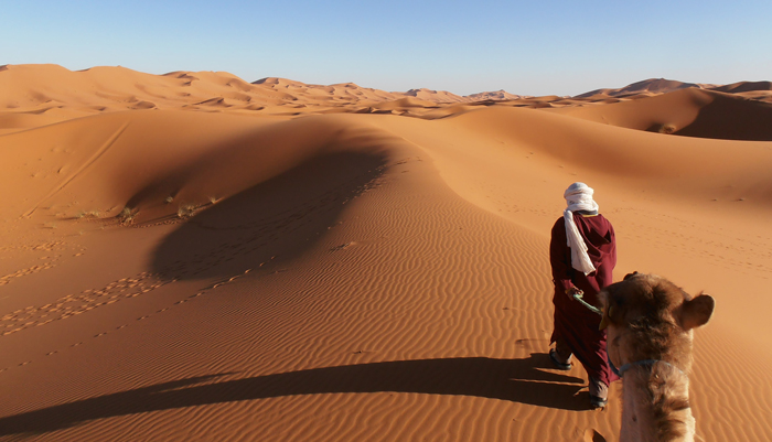 sahara desert essays Antarctica is the largest desert in the world, while the sahara in africa is the largest of the hot deserts there are also deserts close to santa barbara, such as.