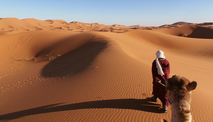 trans saharan desert