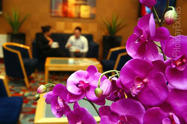 An orchid at the Comfort Hotel