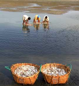 More beach fishing