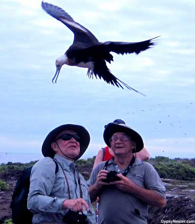 Only on Galapagos Island